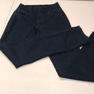 Jag Jeans - High Rise Straight Leg - Dark Wash